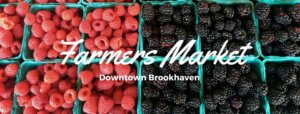 downtown brookhaven ms farmers market