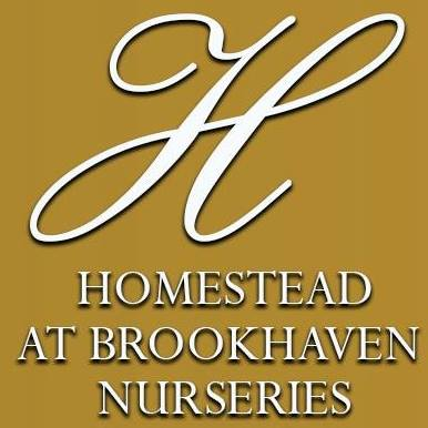 homestead at brookhaven nurseries